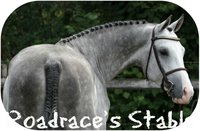 Roadrace´s Stable